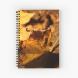 Available in a selection of ruled or graph pages