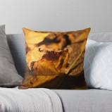 Vibrant double-sided print throw pillows to update any room